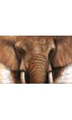 Cuadro Elefante marrón mural