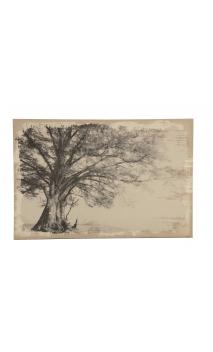 Cuadro Árbol Monocromático 150x100 cm