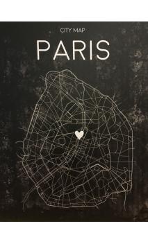 Lienzo Mapa PARIS LEDS 113